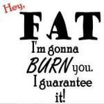 bästa fettförbrännaren